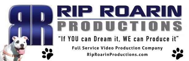 Rip Roarin Animal Project_